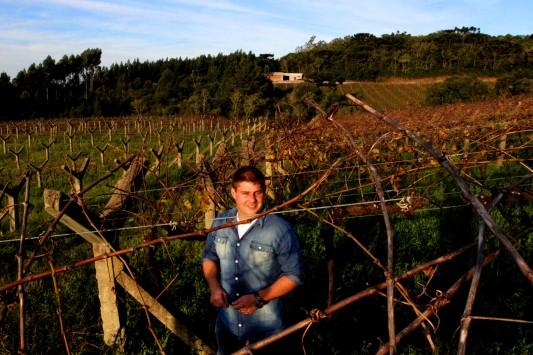Gonçalo e os vinhedos em Galópolis: dedicação e paixão pelo trabalho (foto: Gabriela Di Bella).