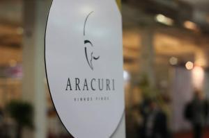 O enigmático logo da Vinícola Aracuri (foto: Evandro Silva)