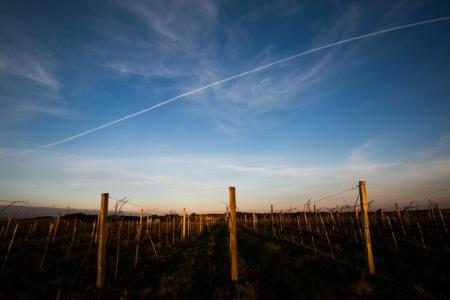 O céu do Pampa, cortado pela passagem de um avião. (foto: Gabriela Di Bella)