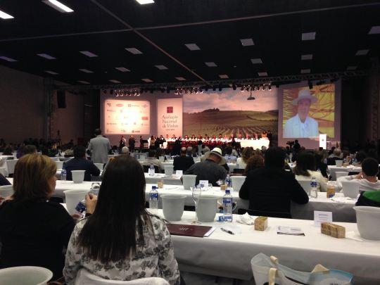 Maior e mais significativa degustação brasileira ocorre todos os anos na Serra Gaúcha.